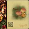 iPad Art coloured leaves painted by Ako Lamble using a moleskine sketchbook.